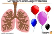 Luftballons und Lungenvolumen